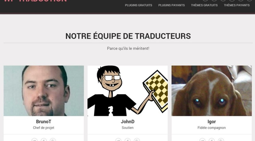 Mieux vaut avoir la version française de son thème WordPress
